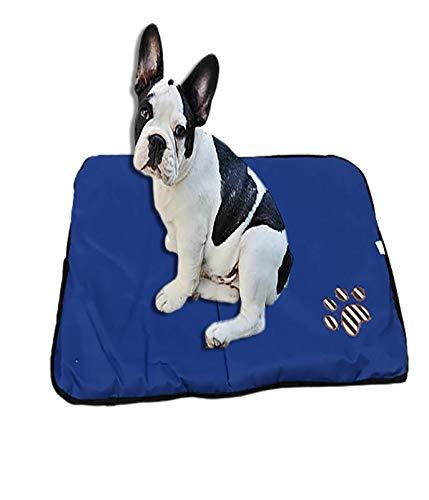 Ducomi Paco Tappetino Cane 55 x 75 cm - Cuccia in Morbido Pile e Caldo Rivestimento e Base Antiscivolo - Materassino per Cani di Piccola e Media Taglia da Interno (Blue)