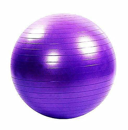 Toorx Palla Gym Ball EVERFIT CM.65 Viola PSICOMOTORIA con Pompa