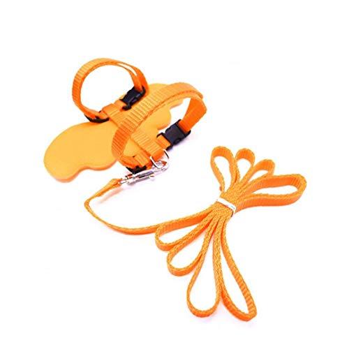 Unicoco Kleine Katze Hund Adjustable Armadillos Engels-flügel-Design Zurück Leinen Und Halsbänder Set Hundekatze-welpen Seil Leinseile Chest Harness (orange, S)