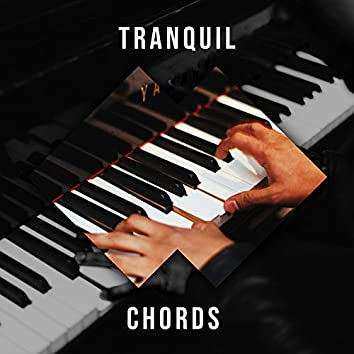 """"""" Tranquil Lounge Chords """""""