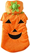 halloween costumes for dogs pumpkin