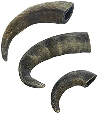 Advance Pet Products Buffalo Horn (3 Pack), One Size