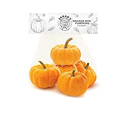 Sarah's Homegrown, Orange Mini Pumpkins; 5 Count Bag