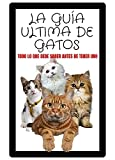 La Guía Ultima de Gatos: Todo Lo Que Debe Saber Antes de Tener Uno