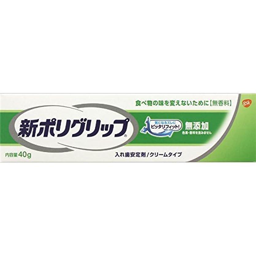 セマフォ遅らせる罪人【アース製薬】新ポリグリップ無添加 40g ×20個セット