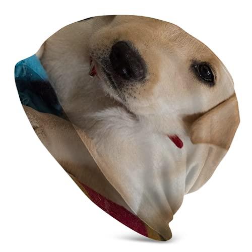 Fodmua Gorro de punto de cachorro de labrador amarillo dorado para mujer