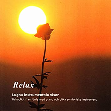 Relax - Lugna Instrumentala Visor