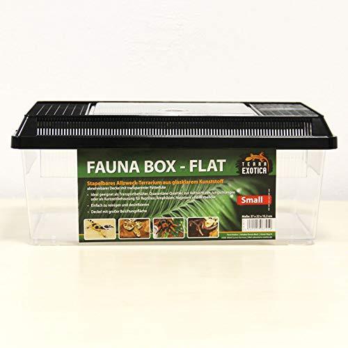 Terra Exotica Fauna Box Flat - small 37 x 22 x 15,2 cm