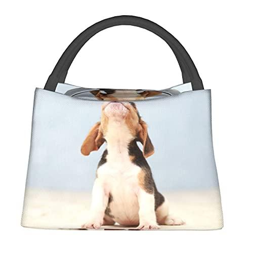 Aislado Bolsa de Enfriamiento Bolsa Térmica de Comestibles,Pequeño y lindo cachorro Beagle mirando hacia arriba,para Office School Picnic Beach Travel