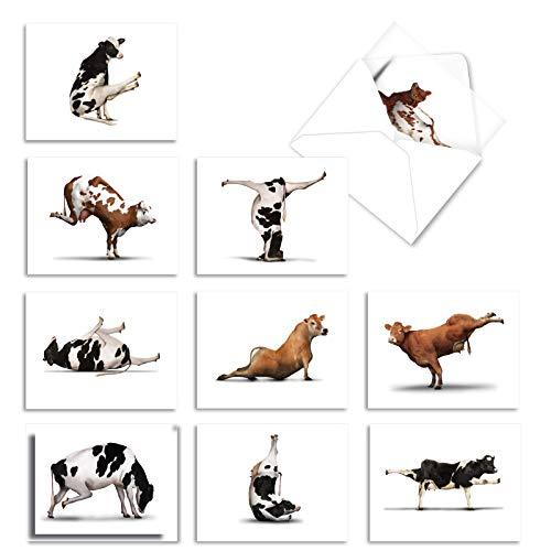The Best Card Company - 10 Blank Yoga Note Cards Bulk (4 x 5.12 Inch) - Assorted Stick Figure and Animals Cards - Bovine Nirvana M6545OCB