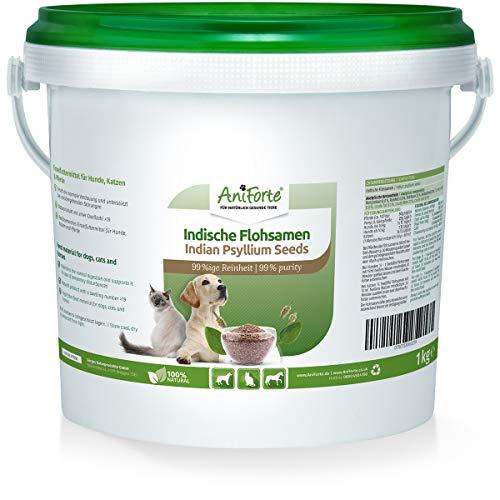 AniForte Graines de psyllium pour Chevaux, Chiens et Chats 1kg - Riche en Fibres et mucilages, qualité des Aliments Crus Indiens, Nettoyage du tractus Gastro-intestinal, pour Le surpoids