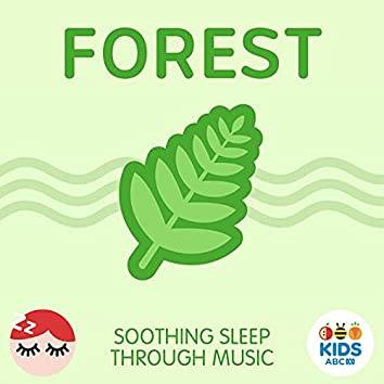 Forest - Soothing Sleep Through Music