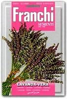 【FRANCHI社種子】【87/1】ラベンダー