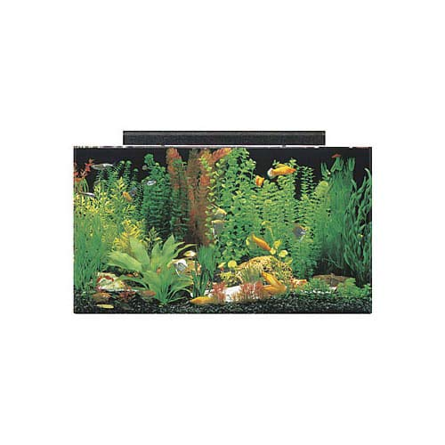 """SeaClear 50 gal Acrylic Aquarium Combo Set, 36 by 15 by 20"""", Clear"""