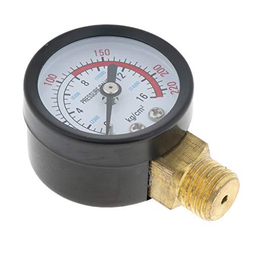 Modelage la pression du gaz régulateur//régulateur pour intérieur 50 mbar 1,5kg//h