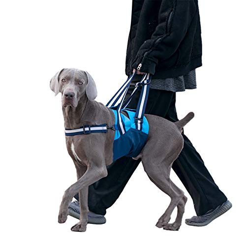 ROZKITCH Dog Lift Harness Support for Rear Legs Pet Lifting Sling Rehabilitation Vest with Handle for K9 Old Assist, Adjustable Dog Recovery Harness Help Stability Joint Injuries Arthritis ACL Rehab