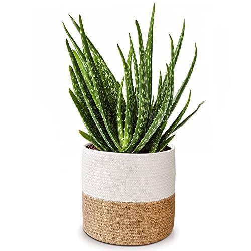 Panier de fleurs en corde de coton pour pot de fleurs 25,4 cm, panier tissé, panier de rangement organisateur moderne décoration de la maison, 27,9 x 27,9 cm