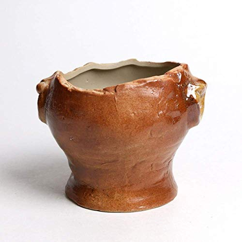 Alqn Maceta de cerámica Artesanía Maceta suculenta Maceta imitación a oreja Horno retro a leña se convierte en maceta carnosa con orificio de drenaje Jardinera de cerámica de arcilla de 12 cm