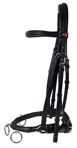 Amesbichler Cheval Kappzaum Reitkappzaum Leder Kappzaum, schwarz zum Longieren und Reiten, Gebiss kann eingeschnallt werden