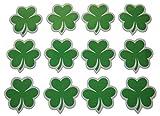 Novel Merk Irish Shamrock Ireland American Green Print Small Refrigerator Magnets Set for Kids Party Favors & School Carnival Prizes Miniature Design (12 Pieces)