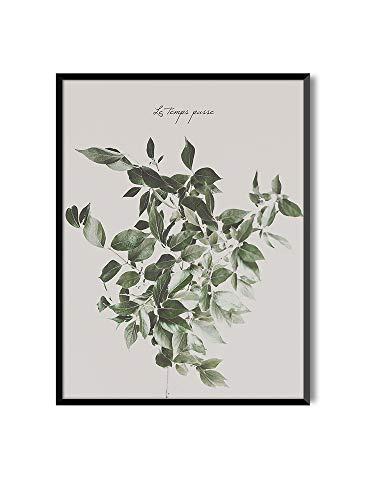 MILUKA Láminas Decorativas para enmarcar colección FEUILLES (láminas Hojas Verdes) | Varios Tamaños - Le Temps Passe (30 x 40 cm)