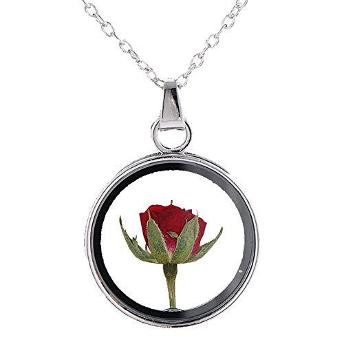 Principito Rose Rojos De Muestras Secas Collares Pendientes del Collar De Rose del Camafeo Flores De La Planta De Muestras De Cristal Redondo De La Mujer