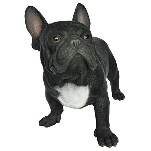 Hi-Line Gifts 20' Black and White French Bulldog Garden Statue