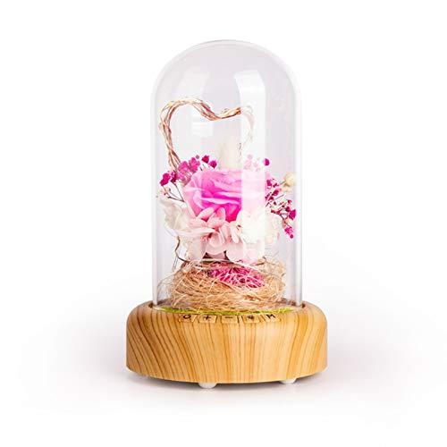 YOPU Luz nocturna con sonido Bluetooth, botella de deseos, altavoz Bluetooth, 1200 mAh USB de carga eterna con flor LED para mesita de noche, cumpleaños