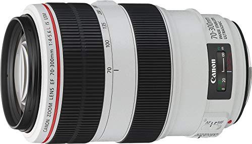 Canon EF 70-300mm f/4-5.6 USM L IS Objektiv (67 mm Filtergewinde) (Generalüberholt)