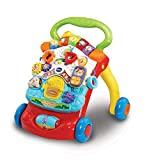 VTech 80-505663 First Steps - Andador para bebé, Multicolor