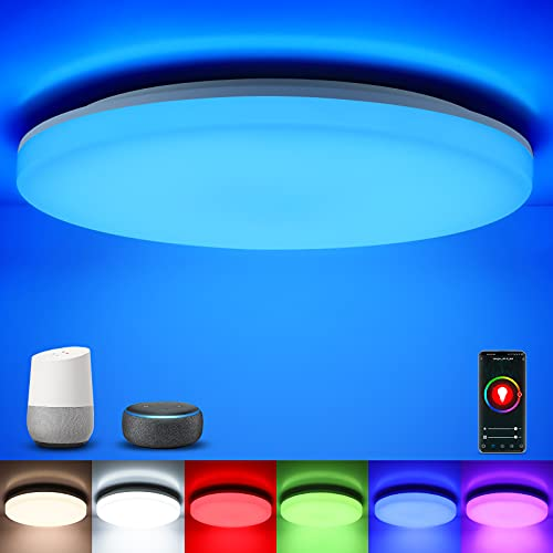 Oeegoo Smart Ceiling Light Flush Mount LED, Compatible with Alexa Google Home App Control, 12 inch 24W Low Profile Dimmable RGB Ambient Light Fixture for Living Room Bedroom Bathroom