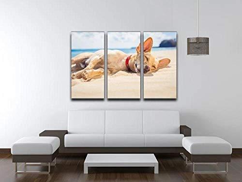Gyybfhn 3 Piezas Lienzo Pintura,Impresiones En Lienzo 3 Piezas/Set,Moderno Pared Cuadros Decoración Hogar Sala Estar Dormitorio,Regalo,50Cmx70Cmx3(Marco) Perro Chihuahua Relajante Y Descansando