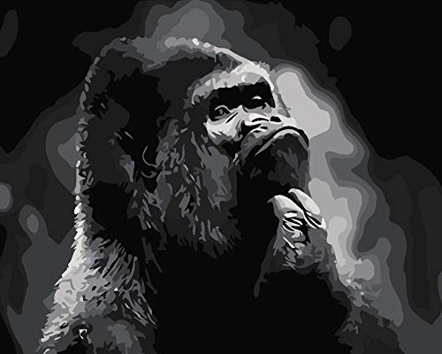 Diy oil painting, paint by number kits- Animal gorilla Hand Painted Wall Canvas for Adults Kids Arts Craft, Living Room Home Decor Art, 16 * 20 Inch Frameless