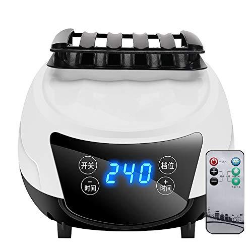 Dryers Asciugatrice Portatile Riscaldatore di Temporizzazione Telecomando 240min, 1600W Asciugabiancheria Elettrico, Sicuro da Usare