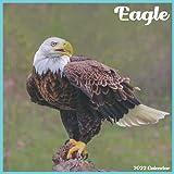 Eagle Calendar 2022: Official Eagle Birds Calendar 2022, 16 Month Calendar 2022