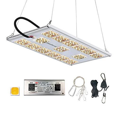 Lenofocus MX1200 LED Grow Light with CREE Diodes Meanwell Driver, 2X2 3x3 FT Coverage Full Spectrum LED Board Grow Lights for Indoor Plants, Dimmable Plant Growing Lamp for Seeding Veg Flowering