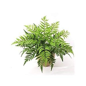 "Silk Flower Arrangements Larksilk Boston Fern Artificial 28"" Plant | 7 Frond Silk Greenery Bush for Indoor Home Décor or Outdoor Plant, Hanging Basket, Planters"