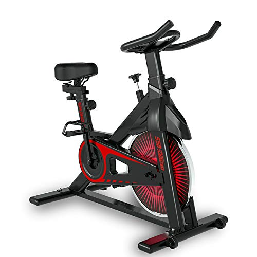 Sparnod Fitness SSB-10 Spin Bike Exercise Cycle for Home Gym - Digital Display, Adjustable...