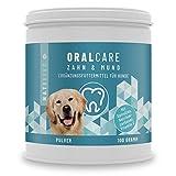 Hunde Zahnpflege bei Zahnstein & Mundgeruch + Einfache Futterzugabe | NatiVivo OralCare | 100g Pulver – regelmäßige Zahnreinigung - ohne Zahnpasta