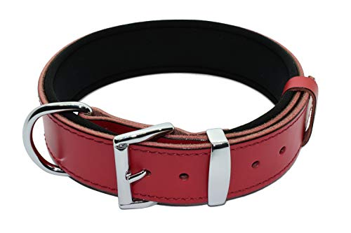Tuberk Soft Padded, Genuine Leather, Luxury Durable and Strong Adjustable Dog Collar