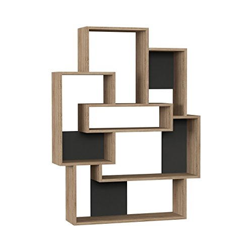 Ada Home Decor Bowcott Modern Dark Brown & Light Mocha Bookcase 55.51'' H x 14.57'' W x 8.66'' D/Shelving Unit/Bookshelf