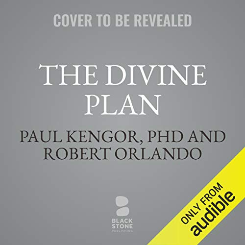 The Divine Plan cover art