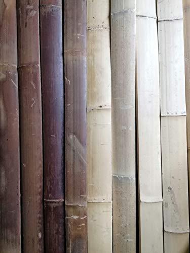 BIHL 10 x 4 cm Bambuslatten Natur Caramel 2 m Wandverkleidung Sichtschutz Bambusrohr (1 m, Caramel)