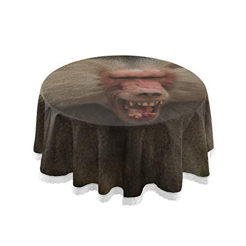 XiexHOME Runde Moderne Tischdecken Tierporträt Kunst Pavian Einfache Tischdecke 60 Zoll Spitze Stitching Macrame Polyester Dekoration