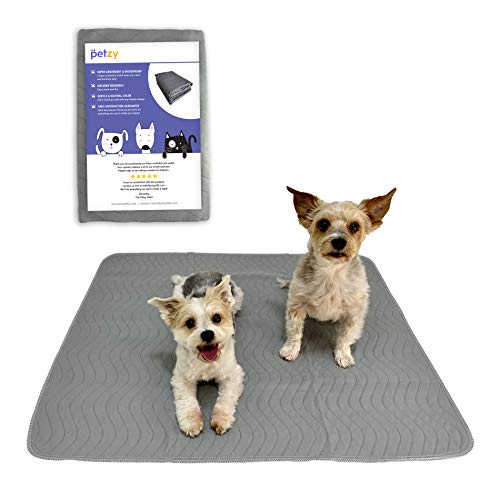 Petzy Washable Pee Pads for Dogs (XL 2 Pack) | Premium Waterproof Dog Training Potty Pads | Reusable Puppy Pads | Super Absorbent, Easy to Wash, Anti-Slip, Perfect Size (31