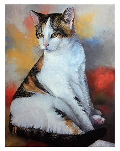 Kit di pittura a olio fai da te per bambini Animale gatto gatto siamese animale gatto con spazzole e pigmenti acrilici fai da te su tela per adulti principianti