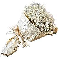 WDOIT - Ramo de flores secas naturales gipsófila, para manualidades, decoración de casa, jardín, boda, fiesta, beige, 40*20CM