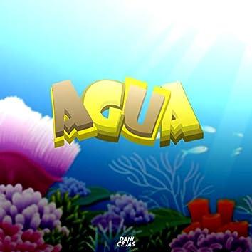 Agua (Remix)