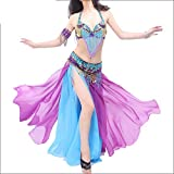ベリーダンスドレス 女性のセクシーな部族のベリーダンスブラジャーベルトカーニバルパーティーパーティーパフォーマンスコスチューム 女性ダンス衣装 (色 : 紫の, サイズ : M)