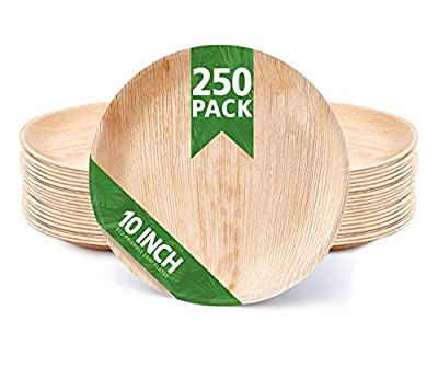 """250 Pack of 10"""" Round Disposable Palm Leaf Plates Set - Sturdy & Elegant & Eco - Perfect for BBQs - Camping - Party - Home Use - Biodegradable & Compostable Dinnerware - by Eko Future"""